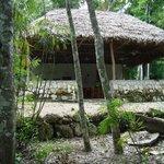 Foto de Maya Zacpeten Jungle Lodge
