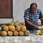 pineapple seller, vendedor de pinas, ananas verkaeufer