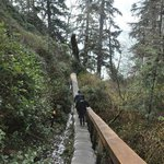On the Juan de Fuca Marine Trail