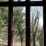 Looking through the classroom window.