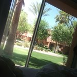 view of grounds from my bed
