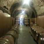 Tunnels on wine tour