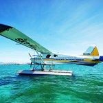 our gorgeous plane