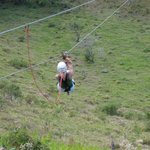 Zip Line at Monkey Jungle