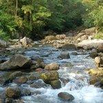 A beautiful stream on a beautiful island!