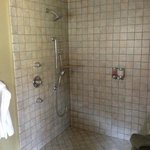 view of the open shower in the Turtle room