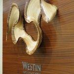 Lobby Sculpture - Kerry Vesper