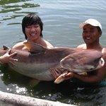 Giant Mekong Catfish (Pla Beuk)
