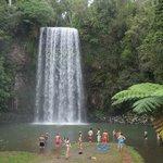 Milaa Milaa Waterfall