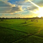 View from Cozy Stay Bali