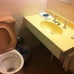 Toilet/basin