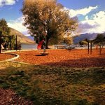 Autumn Foliage in Wanaka