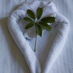 die frischen Handtücher wurden so liebevoll auf das Bett gelegt