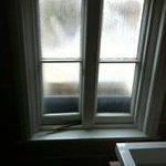 Bathroom window