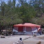 Carpas / Tents
