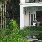 Terrasse mit eigenem Lotusteich