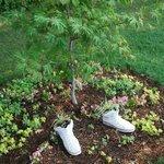 Pretty plantings