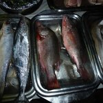 fish for BBQ