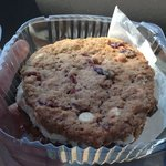 oatmeal chocolate raisin cookie