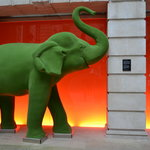 Elephant at the hotel entrance