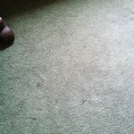 Nasty carpet!