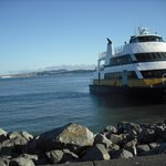 Ferry just across the street from hotel- Easy transportation to the city