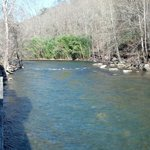 Oconaluftee River out the back deck