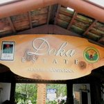 Doka Coffee