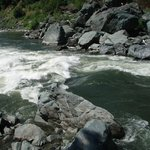 Klamath River - Big Ike!