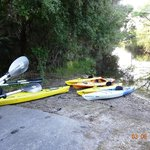 Our Kayak trip