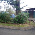 Outside Yurt