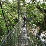 Hanging bridge in Sarapiqui