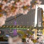 Cherry Blossom, Rainbow Bridge, Tokyo Tower, Tokyo's version of Statue of Liberty