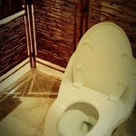 toilet seat (no water, only tissue)