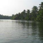 Beautiful Backwaters