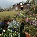 Seven Hills Resort, Namchi