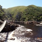 Storms River suspension bridges