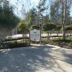 Riviera Wellness Spa - luxury day spa.