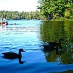 Foto di Walker Lake Resort