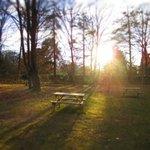 picnics and sunsets