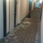 Hallway carpets that were never cleaned after big fire...