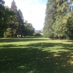 the gorgeous lawns and historic trees