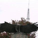 アメリカの国鳥「ハクトウワシ」の彫刻