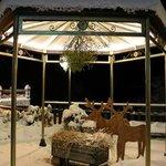 Photo de Hotel Edelweiss - LareSpa