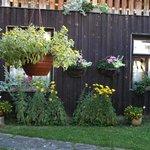 Green garden in front of restaurant