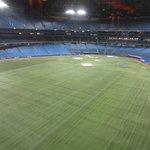 Vista del estadio Rogers desde la cafetería