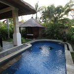 """Vue sur la piscine privée et sur le """"salon de massage"""""""