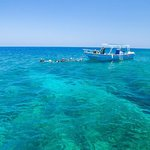 perfect diving & snorkeling