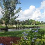 Golfers enjoying the views