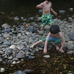 Riverfront access to Macal river. Great exploring and swimming!